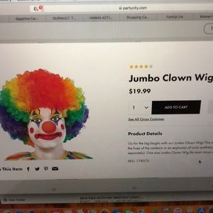 Clown Wig only $6